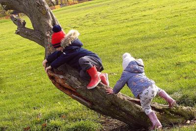 children-para-on-the-tree-the-rise-park-family.jpg